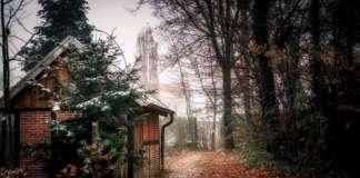 Bosque de Everswinkel