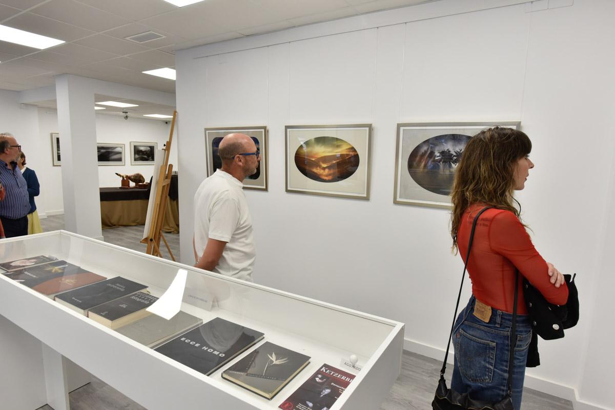 Exposición 'Anamnesis', de Adrián Rolo