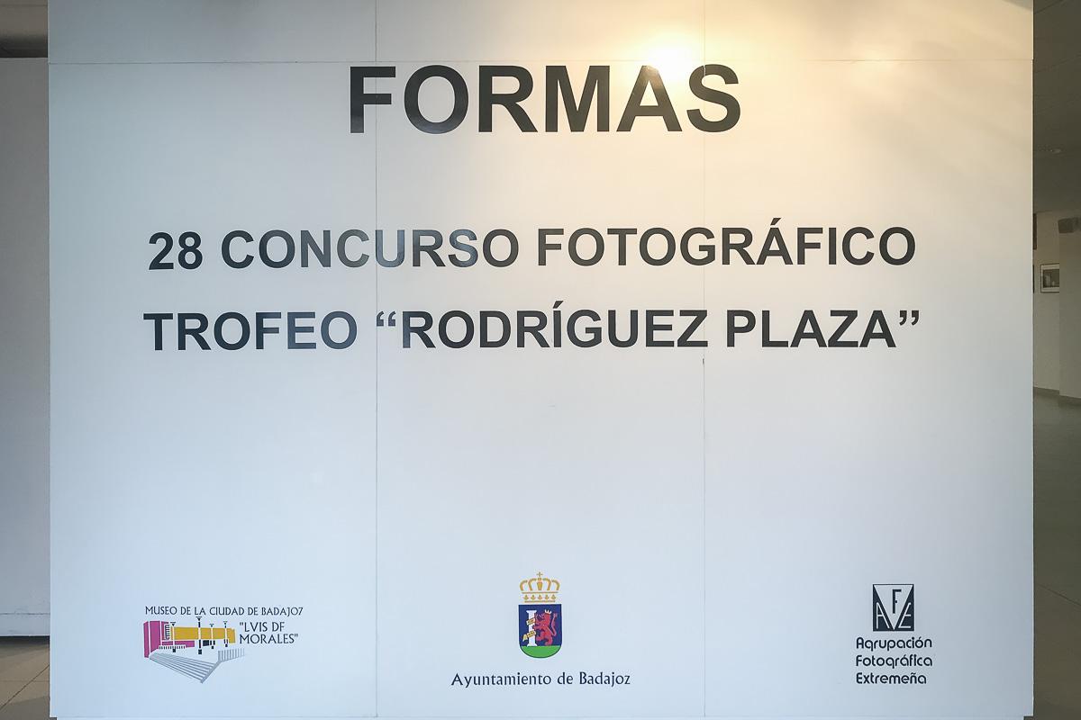Exposición 'Formas'